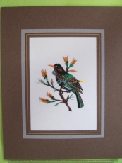 Passepartout-Stickbild-Vögelchen