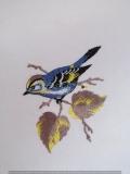 Passepartout-Stickbild-Vogel 2