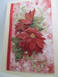 Winter-Grußkarte- Weihnachtsstern